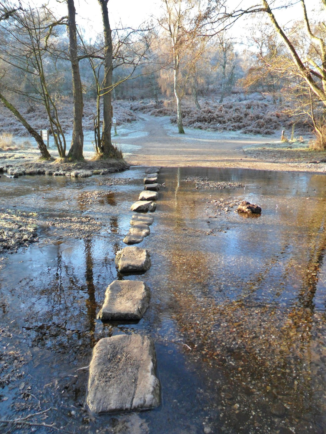 Stepping Stones on a Frosty Day_Cannock Chase_Staffordshire_ England.jpg